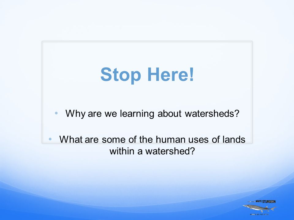 Stop Here. Why are we learning about watersheds.