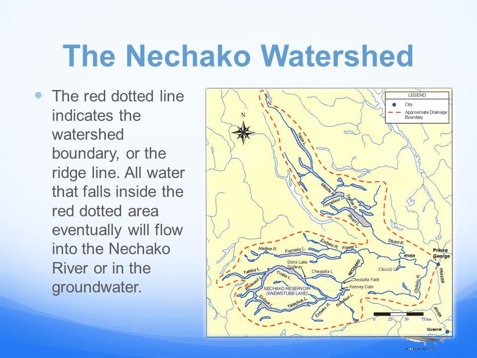 Facts: Nechako Watershed The Nechako River is 290 km long.