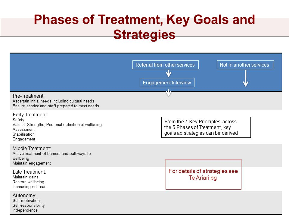 Phases of Treatment, Key Goals and Strategies Pre-Treatment: Ascertain initial needs including cultural needs Ensure service and staff prepared to meet needs Early Treatment: Safety Values, Strengths, Personal definition of wellbeing Assessment Stabilisation Engagement Middle Treatment: Active treatment of barriers and pathways to wellbeing Maintain engagement Late Treatment: Maintain gains Restore wellbeing Increasing self-care Autonomy: Self-motivation Self-responsibility Independence Referral from other servicesNot in another services Engagement Interview For details of strategies see Te Ariari pg From the 7 Key Principles, across the 5 Phases of Treatment, key goals ad strategies can be derived