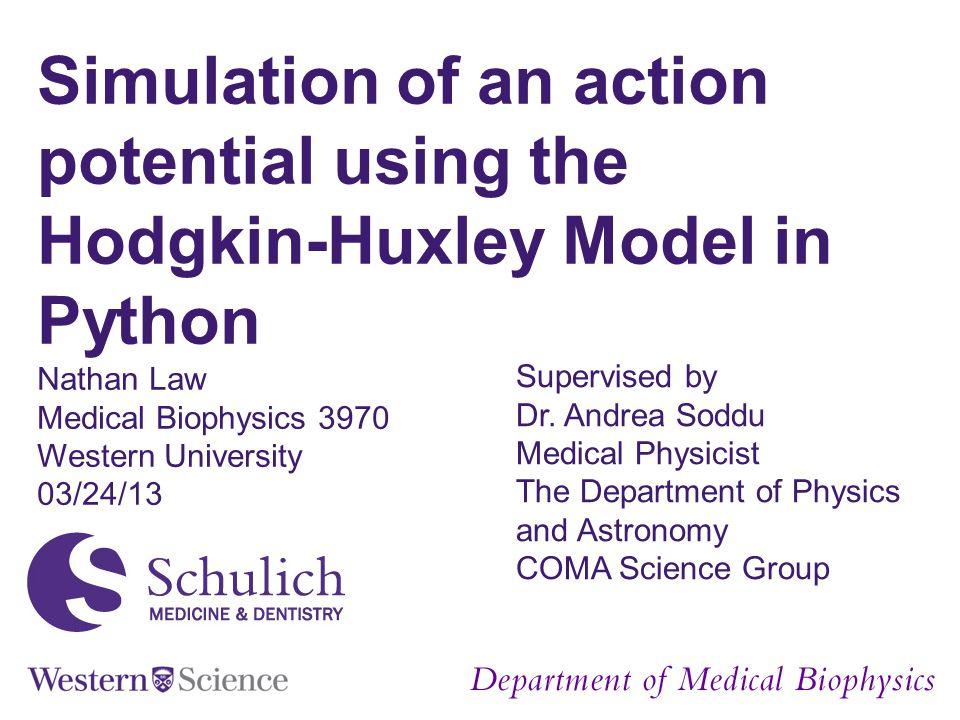 Department of Medical Biophysics Source: Neil Fraser: http://vv.carleton.ca/~neil/neural/neuron-a.htmlhttp://vv.carleton.ca/~neil/neural/neuron-a.html Background
