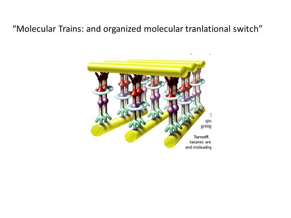 Molecular Trains: and organized molecular tranlational switch