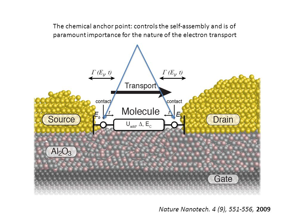 Important factors for the single molecule systems Molecular orbitals Interface Electrodes Nature Nanotech.