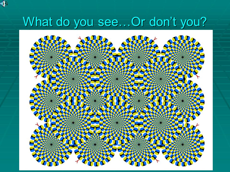 What do you see…Or don't you