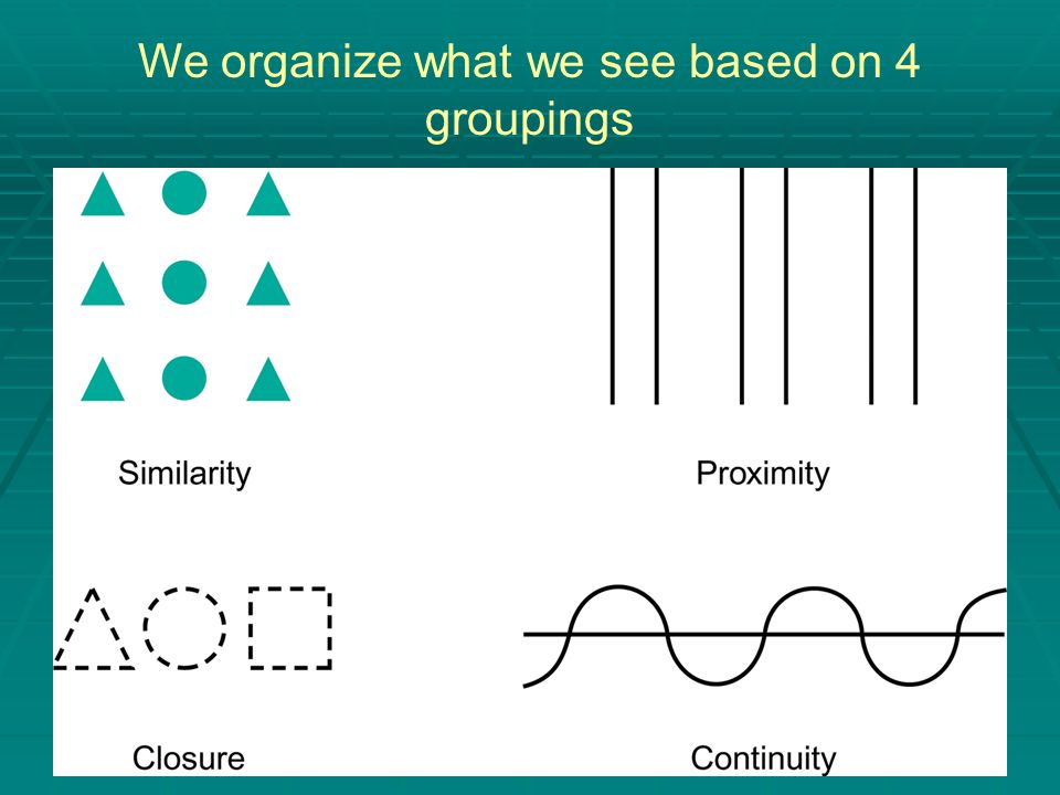 We organize what we see based on 4 groupings