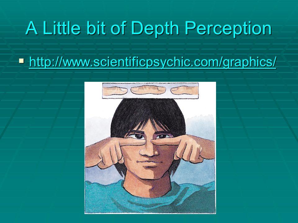 A Little bit of Depth Perception  http://www.scientificpsychic.com/graphics/ http://www.scientificpsychic.com/graphics/