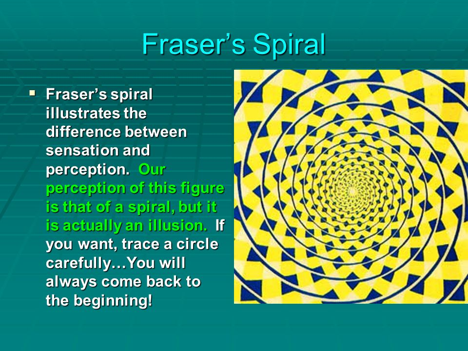 Fraser's Spiral  Fraser's spiral illustrates the difference between sensation and perception.