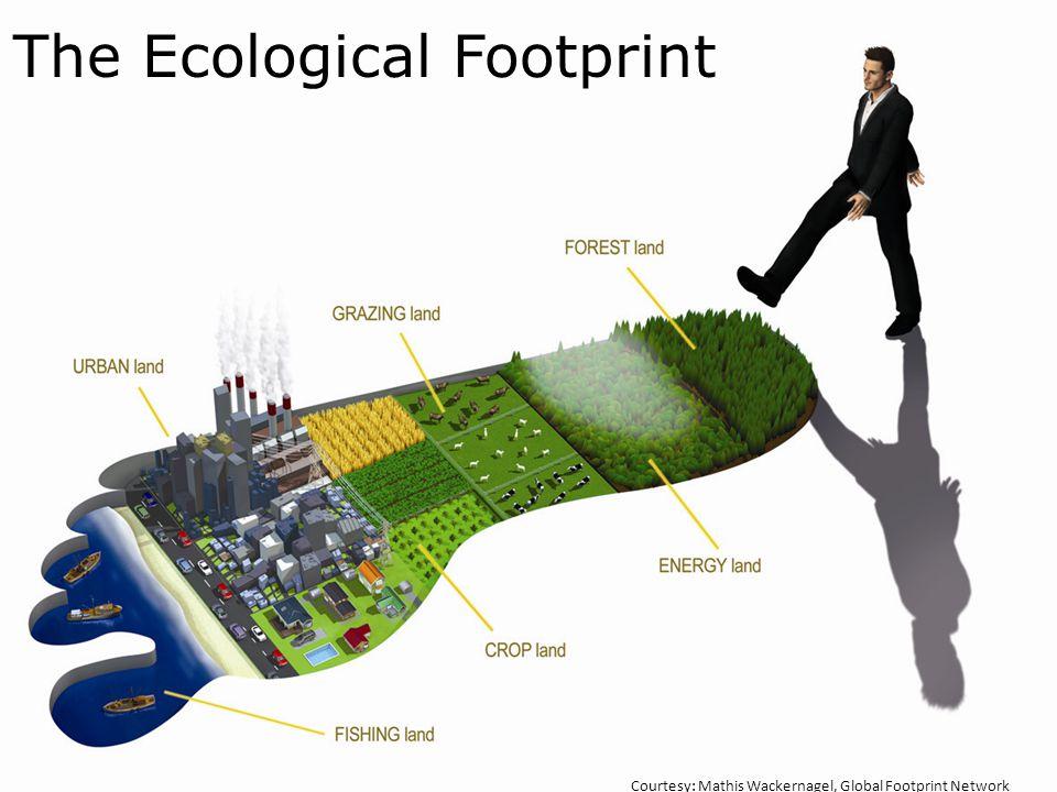 The Ecological Footprint Courtesy: Mathis Wackernagel, Global Footprint Network