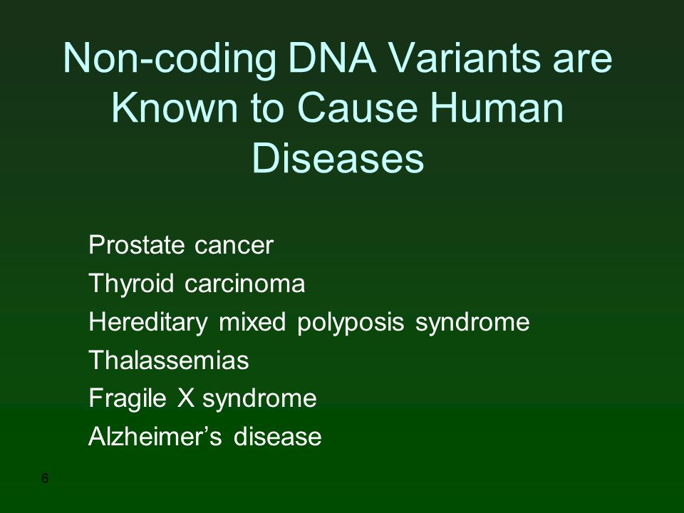 Non-coding DNA Variants are Known to Cause Human Diseases Prostate cancer Thyroid carcinoma Hereditary mixed polyposis syndrome Thalassemias Fragile X syndrome Alzheimer's disease 6