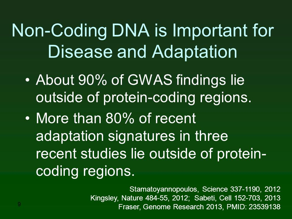 Non-Coding DNA is Important for Disease and Adaptation About 90% of GWAS findings lie outside of protein-coding regions.