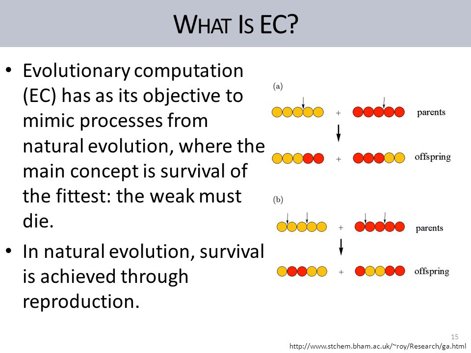 W HAT I S EC? Evolutionary computation (EC) has as its objective to mimic processes from natural evolution, where the main concept is survival of the