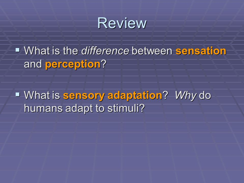 Review  What is the difference between sensation and perception.