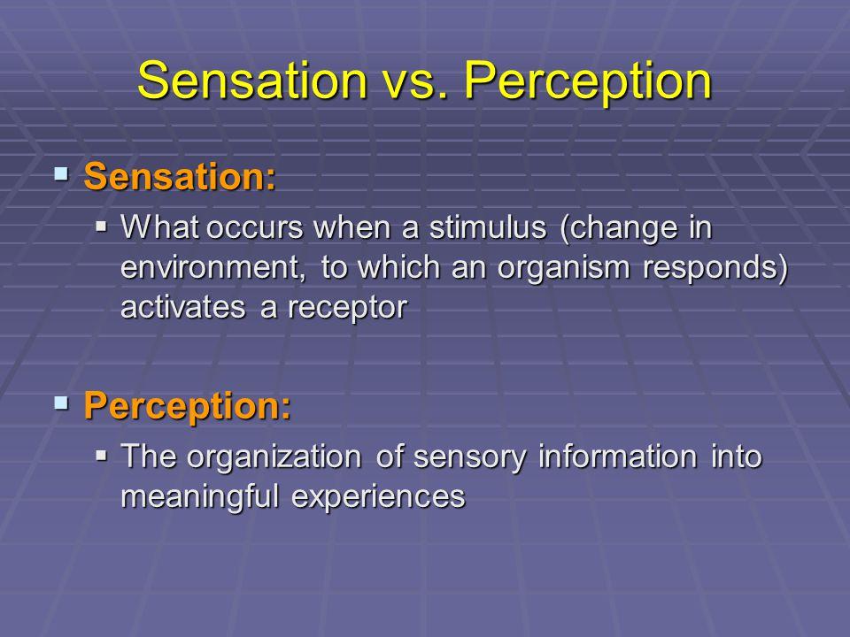 Sensation vs.