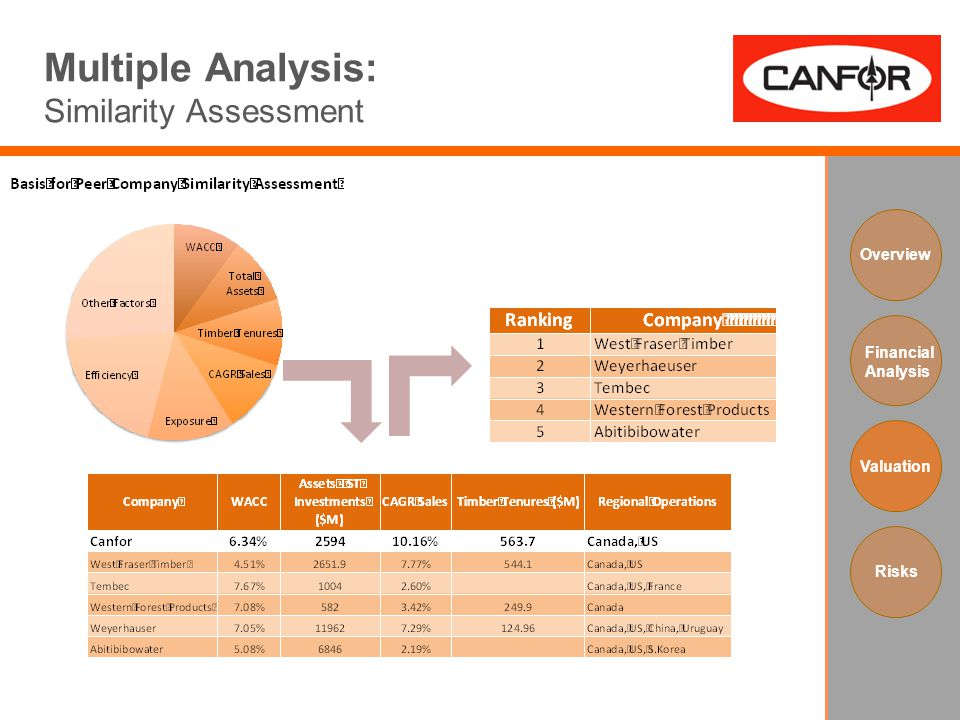 Multiple Analysis: Similarity Assessment Overview Financial Analysis Valuation Risks