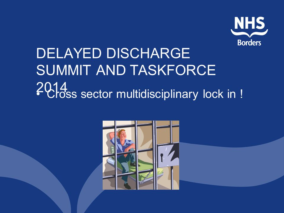 DELAYED DISCHARGE SUMMIT AND TASKFORCE 2014 Cross sector multidisciplinary lock in !