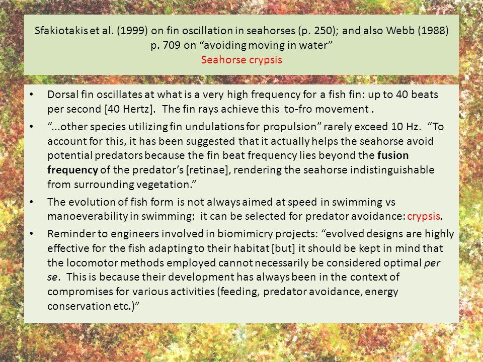 Sfakiotakis et al.(1999) on fin oscillation in seahorses (p.