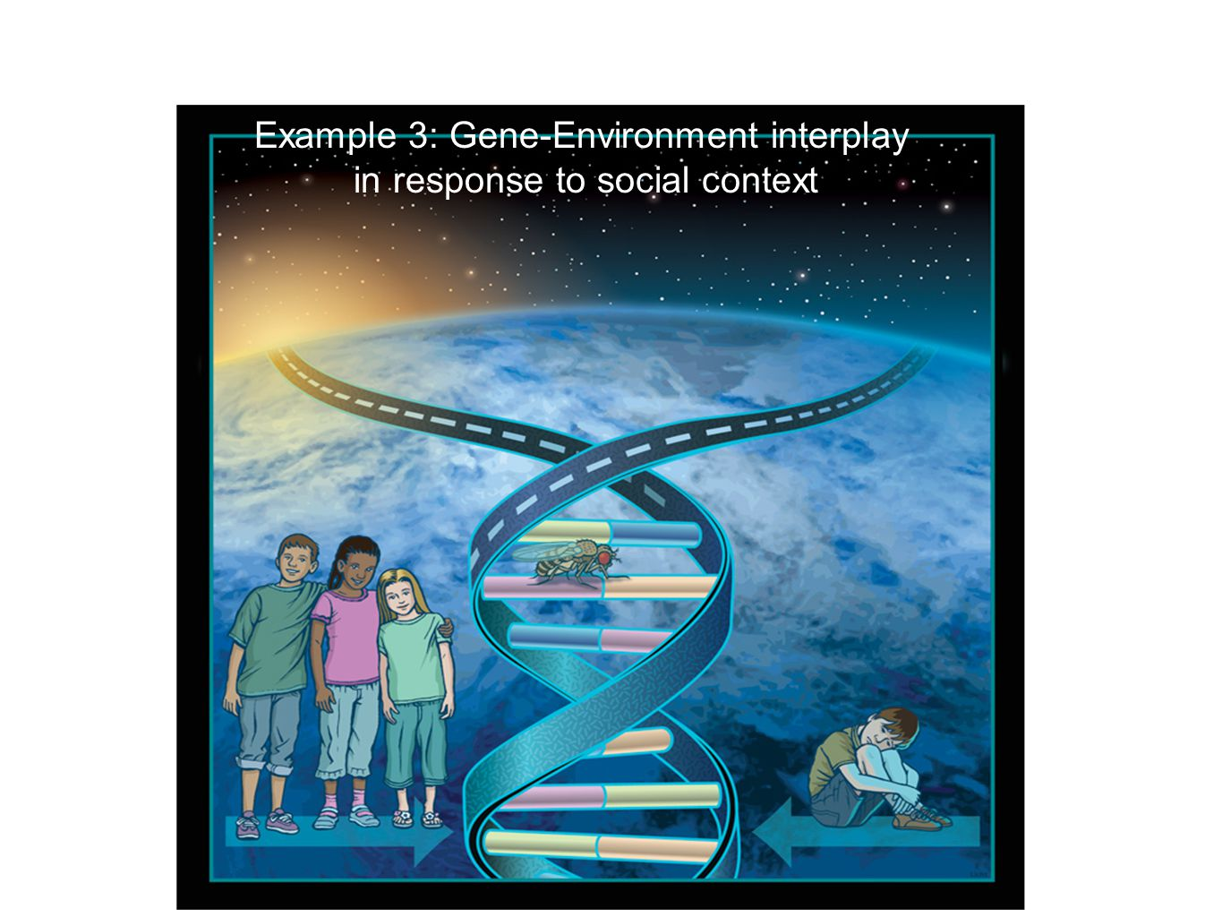 Example 3: Gene-Environment interplay in response to social context