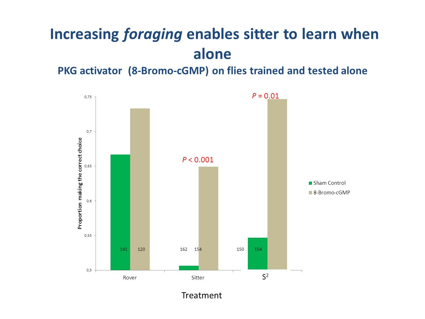Increasing foraging enables sitter to learn when alone PKG activator (8-Bromo-cGMP) on flies trained and tested alone Treatment S2S2 P = 0.01 P < 0.001