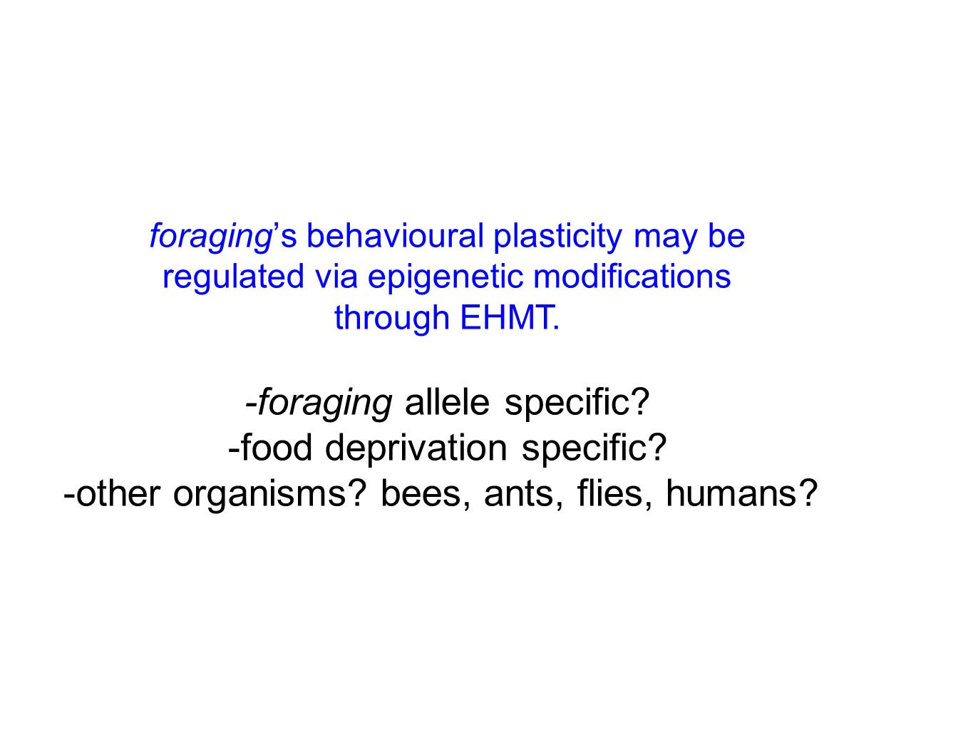 foraging's behavioural plasticity may be regulated via epigenetic modifications through EHMT.