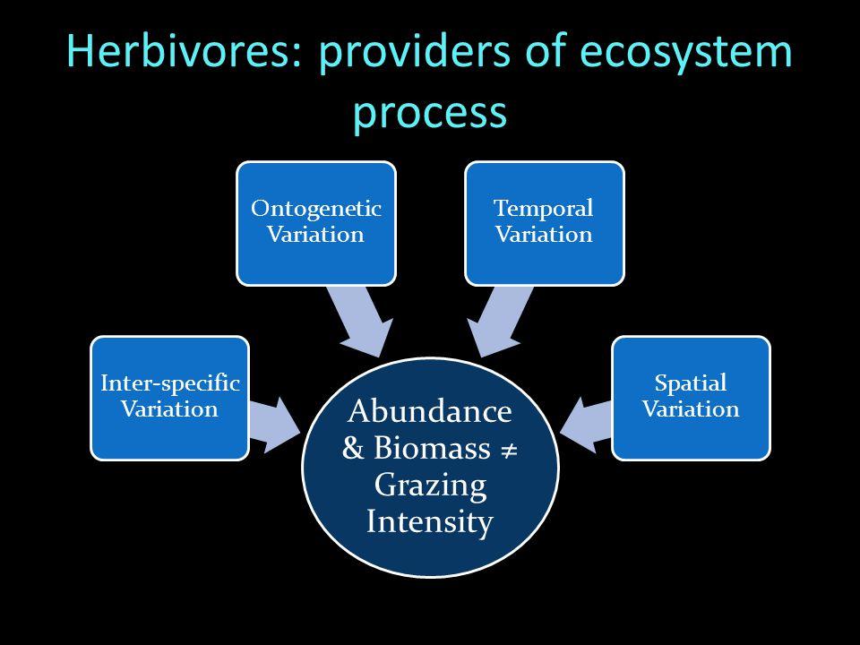 Implications NeutralNegative Feedback › Compensatory Mechanisms Positive Feedback › Further degradation