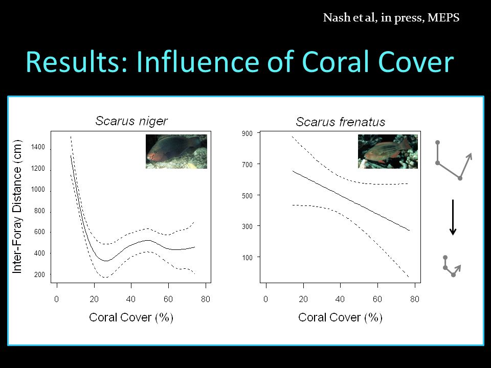 Results: Influence of Coral Cover Nash et al, in press, MEPS 75317531 4321043210