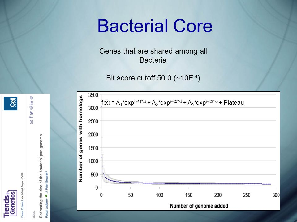 Bacterial Core Genes that are shared among all Bacteria Bit score cutoff 50.0 (~10E -4 ) f(x) = A 1 *exp (-K1*x) + A 2 *exp (-K2*x) + A 3 *exp (-K3*x) + Plateau