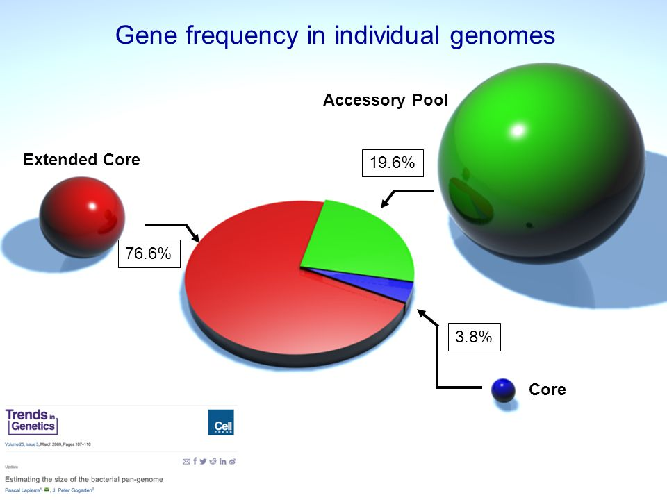 76.6% 3.8% 19.6% Gene frequency in individual genomes Core Extended Core Accessory Pool