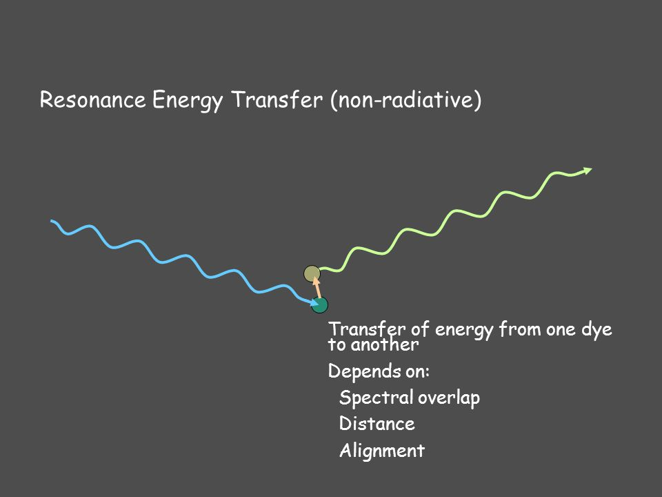Resonance Energy Transfer (non-radiative) Transfer of energy from one dye to another Depends on: Spectral overlap Distance Alignment