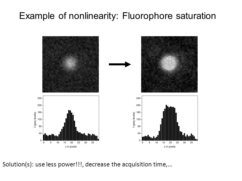 Example of nonlinearity: Fluorophore saturation Solution(s): use less power!!!, decrease the acquisition time,…