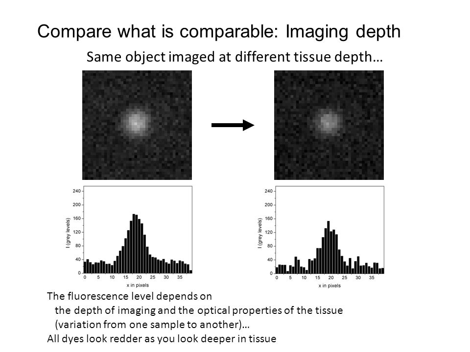 Same object imaged at different tissue depth… The fluorescence level depends on the depth of imaging and the optical properties of the tissue (variation from one sample to another)… All dyes look redder as you look deeper in tissue Compare what is comparable: Imaging depth