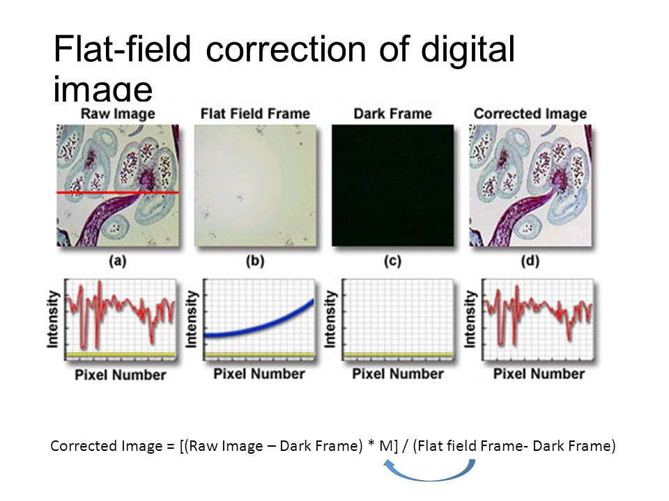 Flat-field correction of digital image Corrected Image = [(Raw Image – Dark Frame) * M] / (Flat field Frame- Dark Frame)