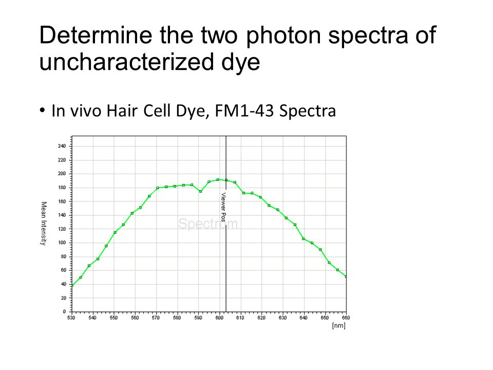 Determine the two photon spectra of uncharacterized dye In vivo Hair Cell Dye, FM1-43 Spectra