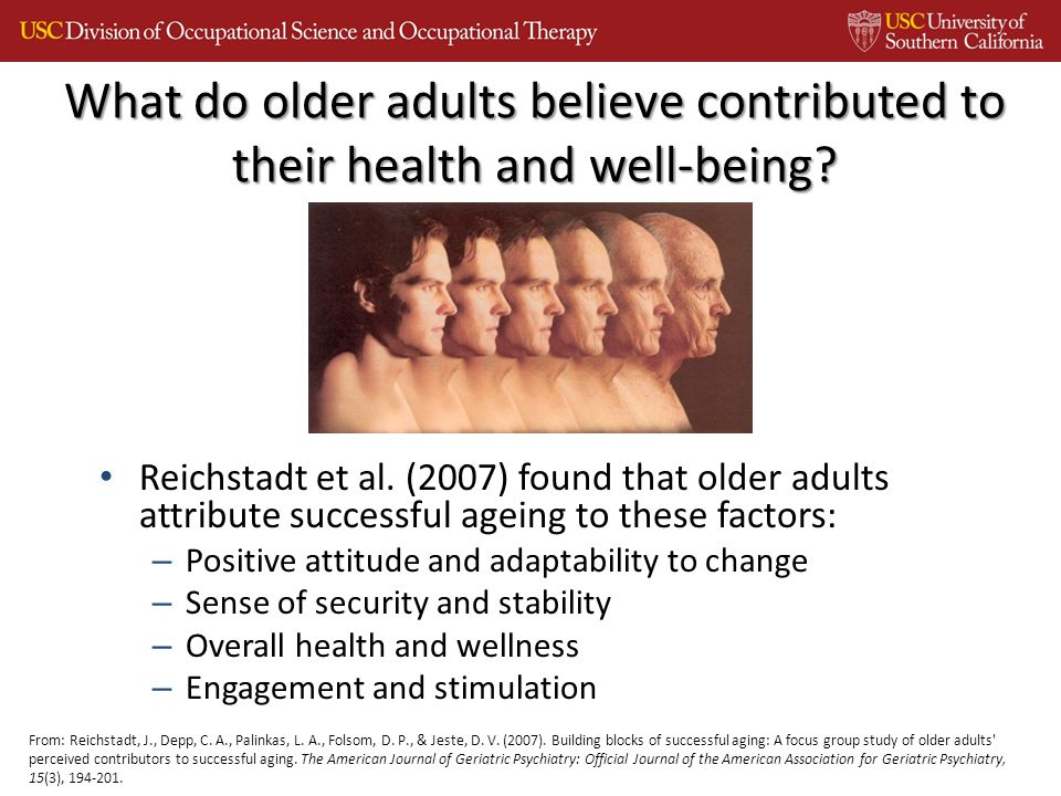 Reichstadt et al. (2007) found that older adults attribute successful ageing to these factors: – Positive attitude and adaptability to change – Sense