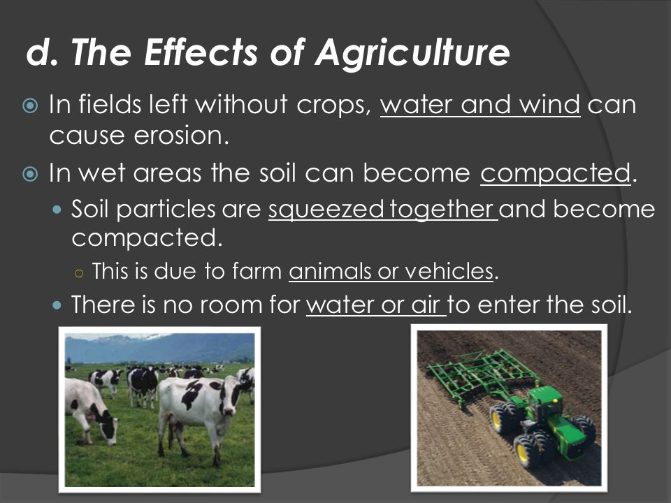 d. The Effects of Agriculture  In fields left without crops, water and wind can cause erosion.  In wet areas the soil can become compacted. Soil par