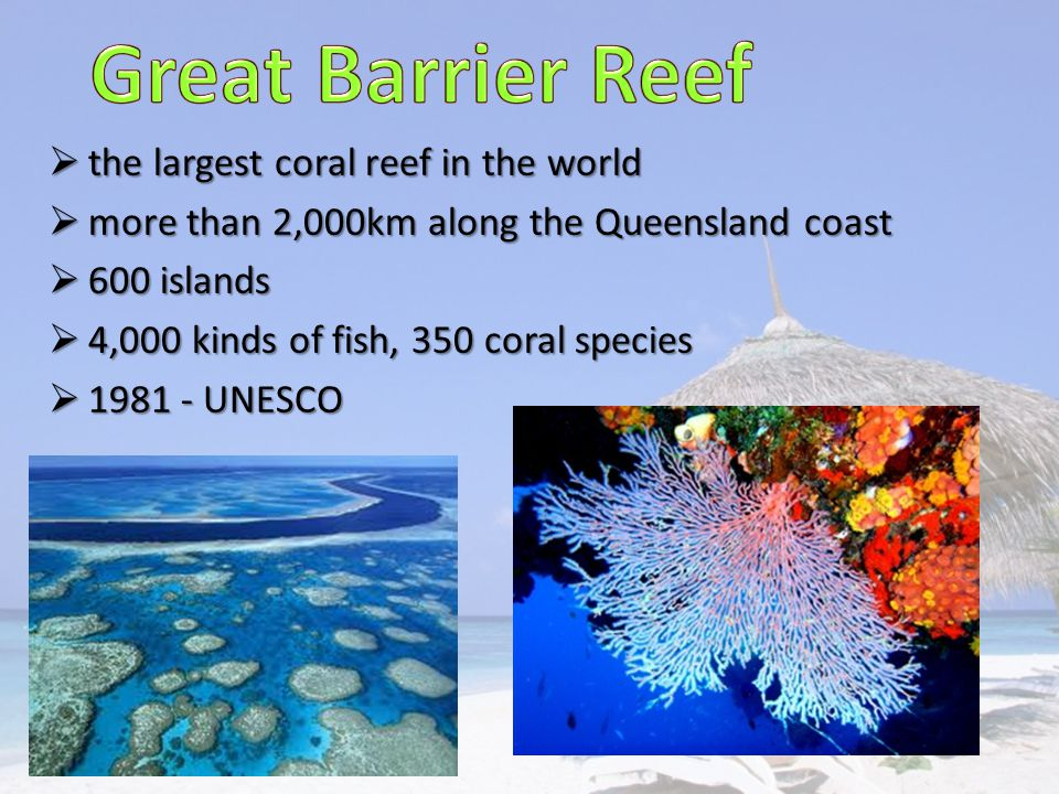  the largest coral reef in the world  more than 2,000km along the Queensland coast  600 islands  4,000 kinds of fish, 350 coral species  1981 - UNESCO