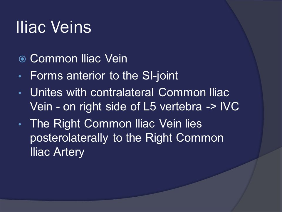 Iliac Veins  Common Iliac Vein Forms anterior to the SI-joint Unites with contralateral Common Iliac Vein - on right side of L5 vertebra -> IVC The Right Common Iliac Vein lies posterolaterally to the Right Common Iliac Artery