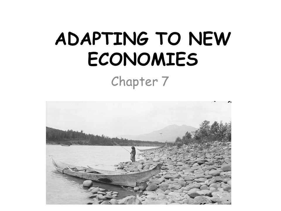 ADAPTING TO NEW ECONOMIES Chapter 7