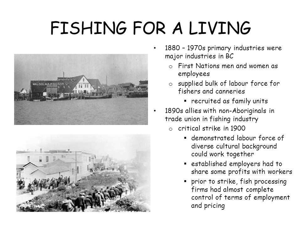 FISHING FOR A LIVING 1880 – 1970s primary industries were major industries in BC o First Nations men and women as employees o supplied bulk of labour