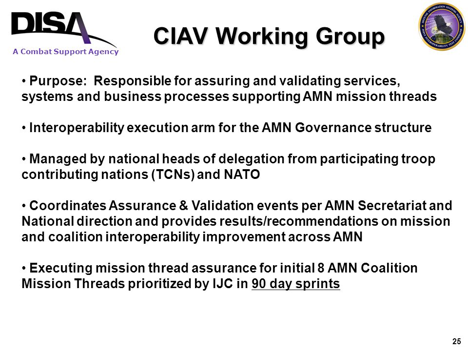A Combat Support Agency 25 CIAV Working Group Purpose: Responsible for assuring and validating services, systems and business processes supporting AMN