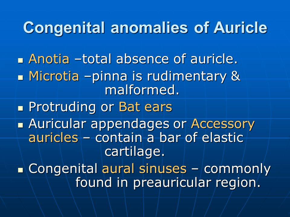 Congenital anomalies of Auricle Anotia –total absence of auricle. Anotia –total absence of auricle. Microtia –pinna is rudimentary & malformed. Microt