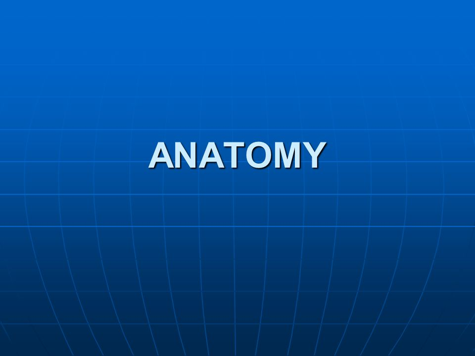 ANATOMY OF EAR Both functionally and anatomically, it can be divided into three parts.