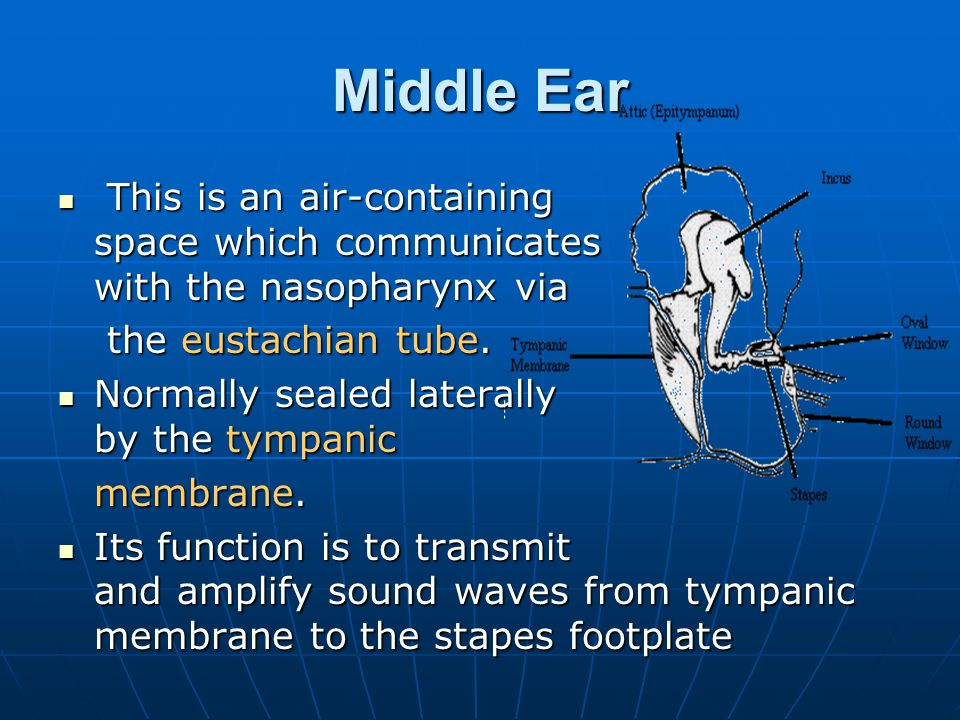 Middle Ear This is an air-containing space which communicates with the nasopharynx via This is an air-containing space which communicates with the nas