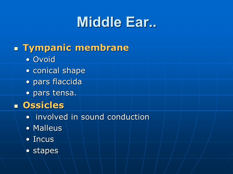 Embryology of Middle ear The core of cells forming meatal plug, migrates medially toward the outgrowth of the first branchial pouch, which will eventually form the middle ear cleft.