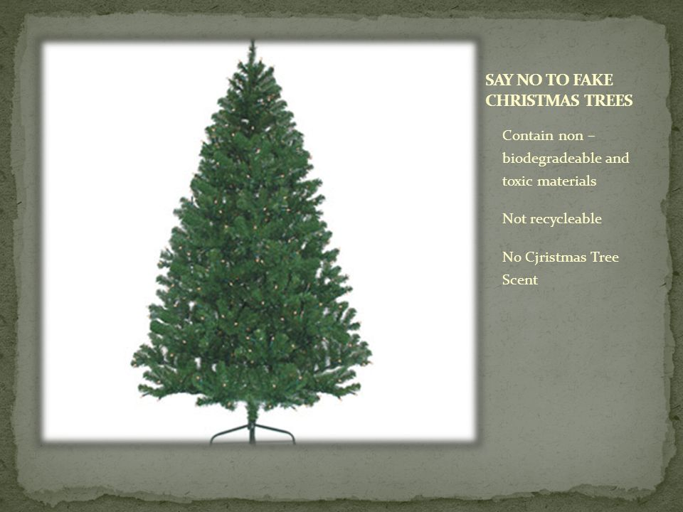 25-30 millions live Christmas trees are sold each year 350 million Christmas trees are currently being grown Trees are a renewable resource All 50 states in America have Christmas tree farms
