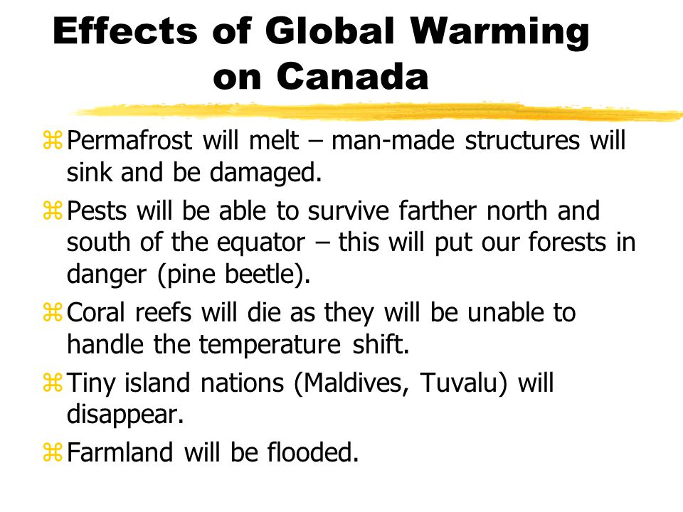 Effects of Global Warming on Canada zPolar bears may become extinct zMany people will be displaced from their homes zOther species, like salmon, may become extinct due to the increasing temperature of the water zWinter recreation areas may suffer due to lack of snow zViolent storms will be more likely zHotter, conditions will make forest fires and brush fires more common and more dangerous zIncreasingly dry conditions in the Prairies will make farming more difficult.