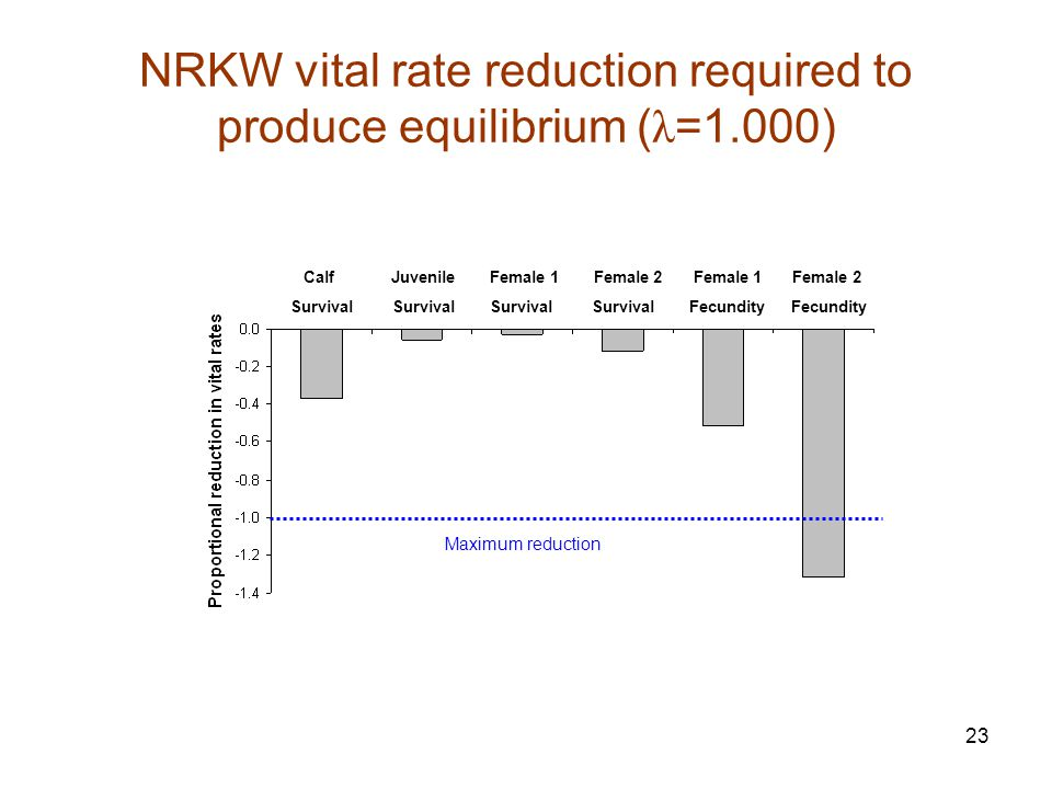 23 NRKW vital rate reduction required to produce equilibrium ( λ =1.000) Calf Juvenile Female 1 Female 2 Female 1 Female 2 Survival Survival Survival