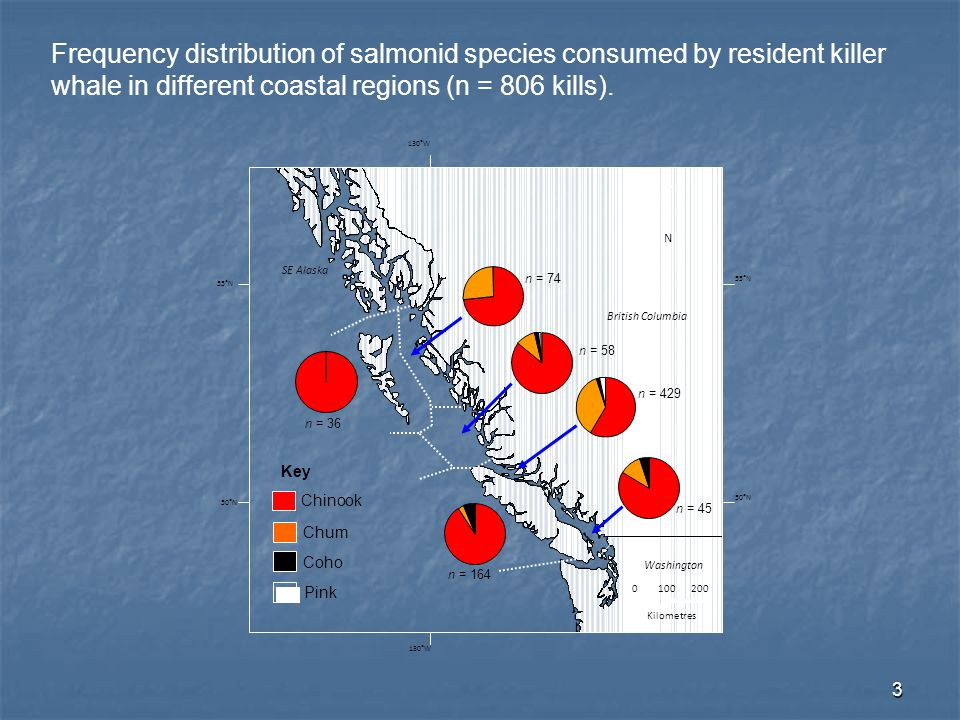 14 Criteria for additional (weak) Hypotheses regarding RKW-Chinook salmon interactions: assuming Chinook remains an important diet component year-round RKW-Chinook encounters (North California to Southeast Alaska) Influence on RKW vital rates Stock size (large contributions to ocean fisheries) Spatial overlap (Ocean-type life history) Temporal overlap (Possible access to the resource outside of summer ranges)