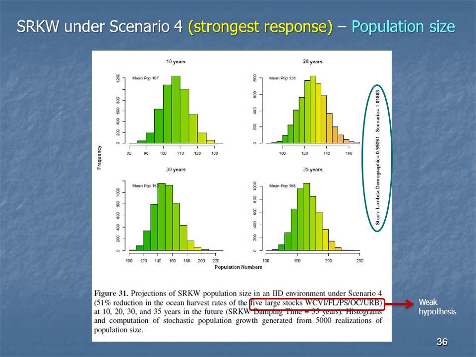 36 SRKW under Scenario 4 (strongest response) – Population size Weak hypothesis