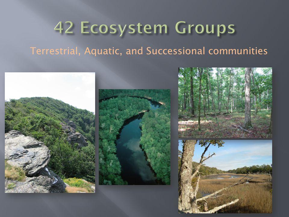 Terrestrial, Aquatic, and Successional communities