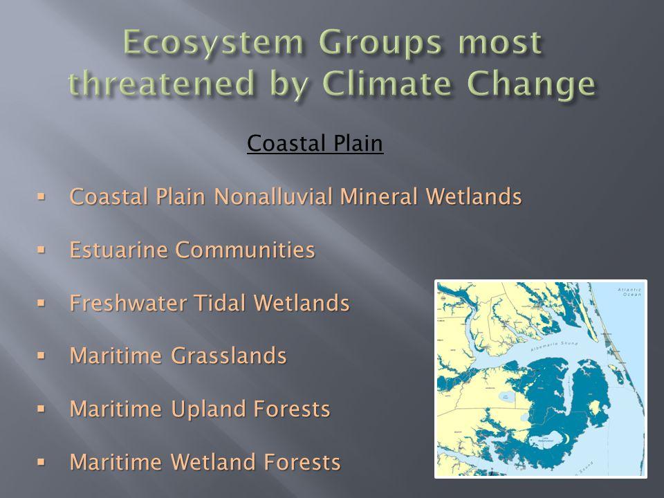 Coastal Plain  Coastal Plain Nonalluvial Mineral Wetlands  Estuarine Communities  Freshwater Tidal Wetlands  Maritime Grasslands  Maritime Upland Forests  Maritime Wetland Forests