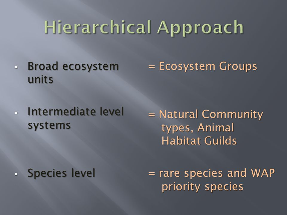  Broad ecosystem units  Intermediate level systems  Species level = Ecosystem Groups = Natural Community types, Animal Habitat Guilds = rare species and WAP priority species